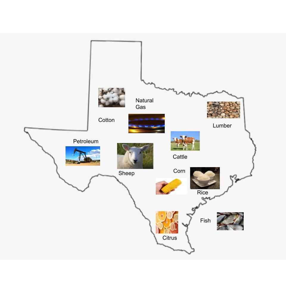 Emily Wiethorn Texas Map